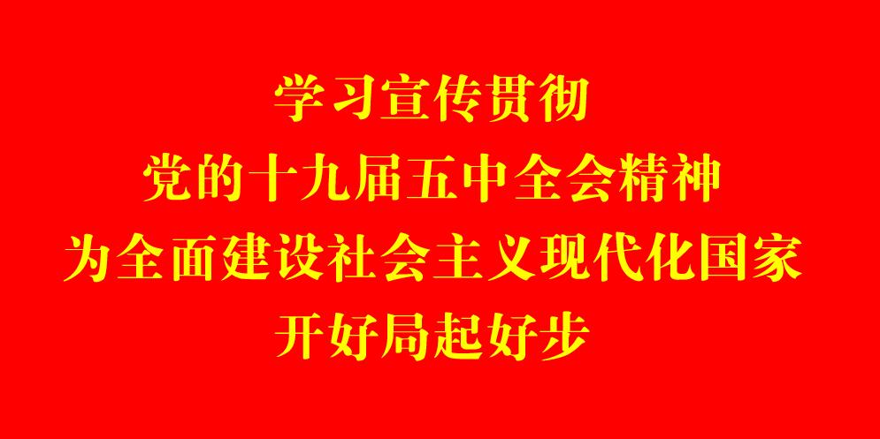 """石嘴山青少年体育赛事""""百花齐放"""""""