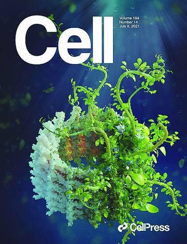 这个蛋白让植物茁壮生长