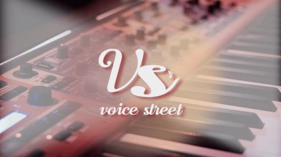 Voice Street:如何用技术和模式来激活音乐NFT产业的价值循环?  第1张 Voice Street:如何用技术和模式来激活音乐NFT产业的价值循环? 币圈信息